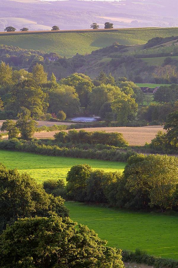 Devon Photograph - Exe Valley Evening by Neil Buchan-Grant