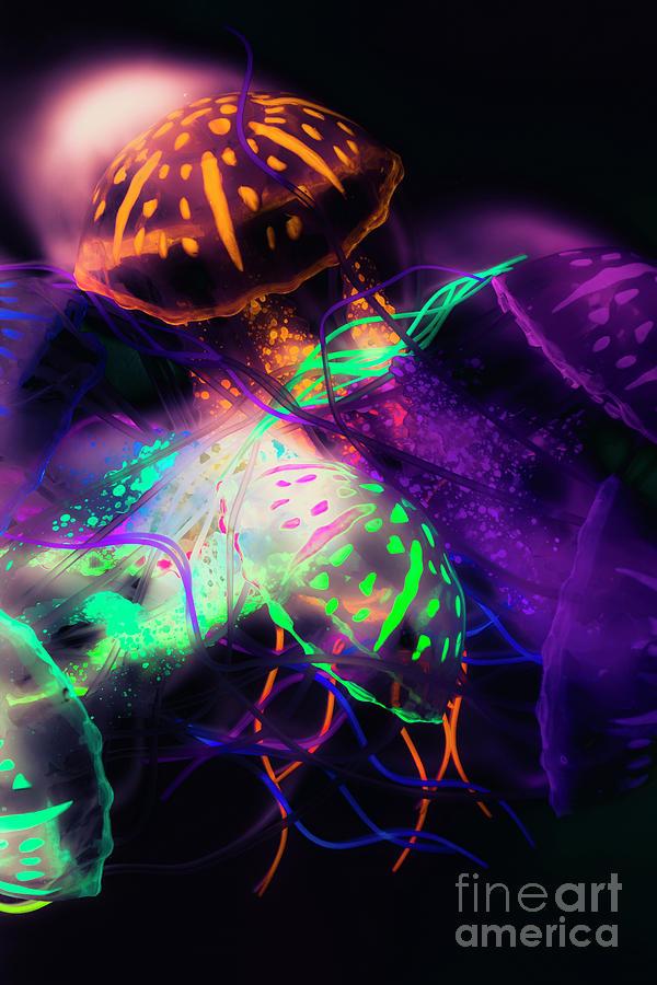 Jellyfish Photograph - Exotic Rainbows by Jorgo Photography - Wall Art Gallery