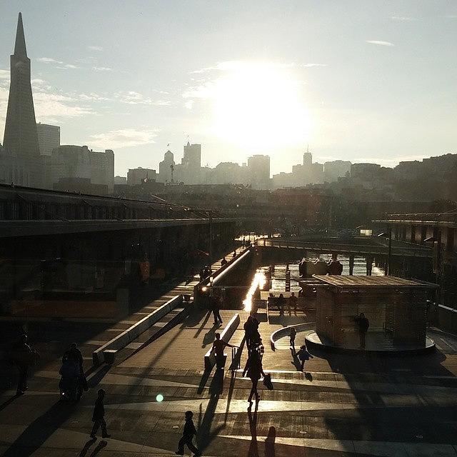 Exploratorium Photograph - Along the Embarcadero by Felicia Zurich-Gallagher