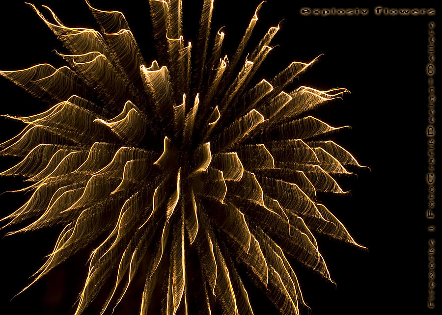 Fireworks Photograph - explosive flowers 1 - Card -  by Heinz - Juergen Oellers