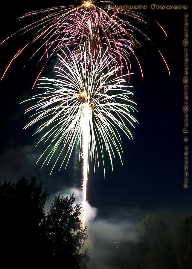 Fireworks Photograph - explosive flowers 9 - Card -  by Heinz - Juergen Oellers