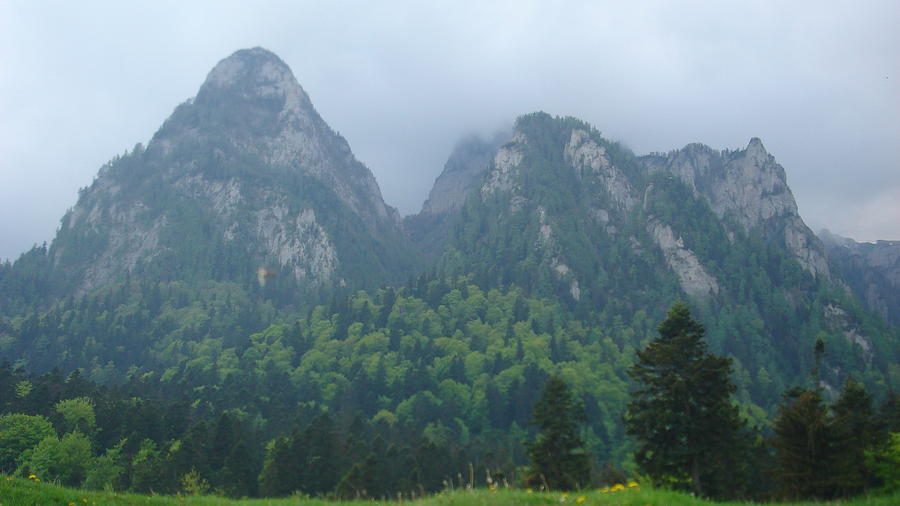 Mountain Landscape Photograph - Expressions  by Georgeta  Blanaru