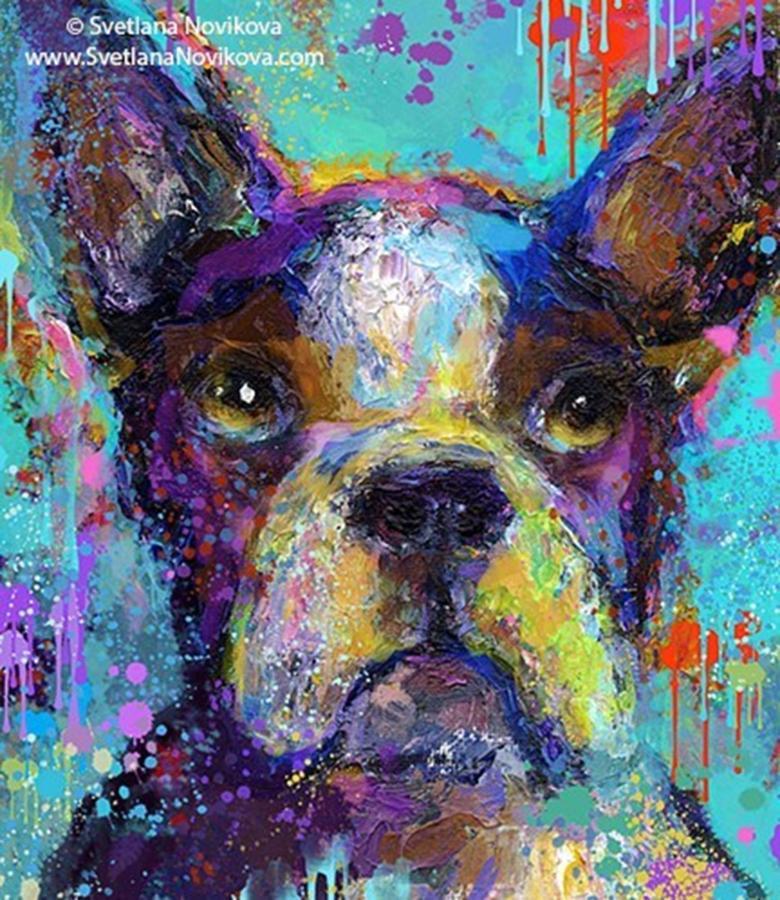 Contemporary Photograph - Expressive Boston Terrier Painting By by Svetlana Novikova