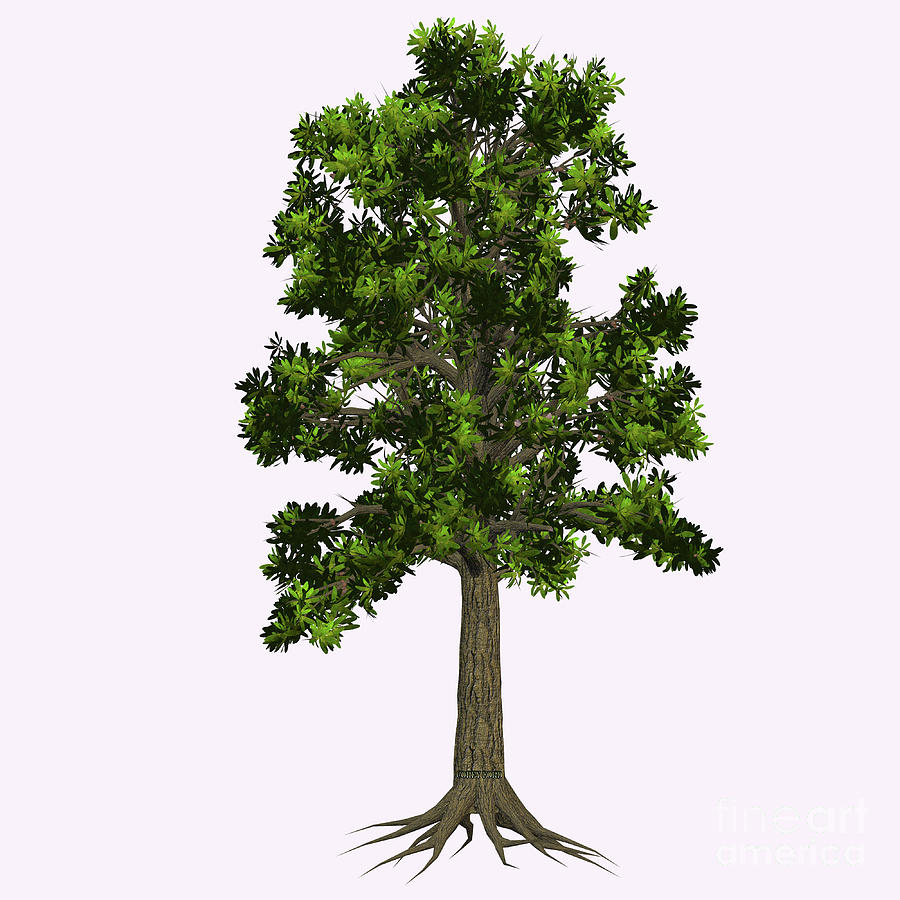 Extinct Glossopteris Tree Painting