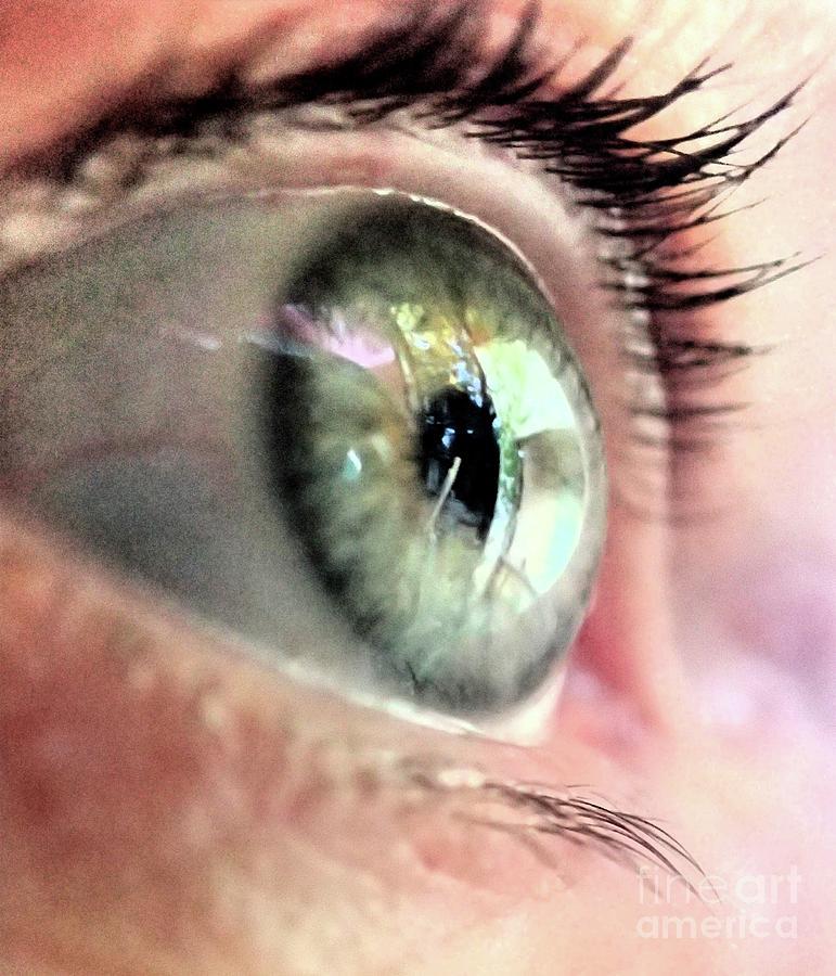 Eyebrow Photograph - Eye by Catherine BELLOEIL