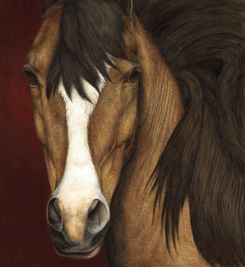 Horse Painting - Eye Contact by Pat Erickson