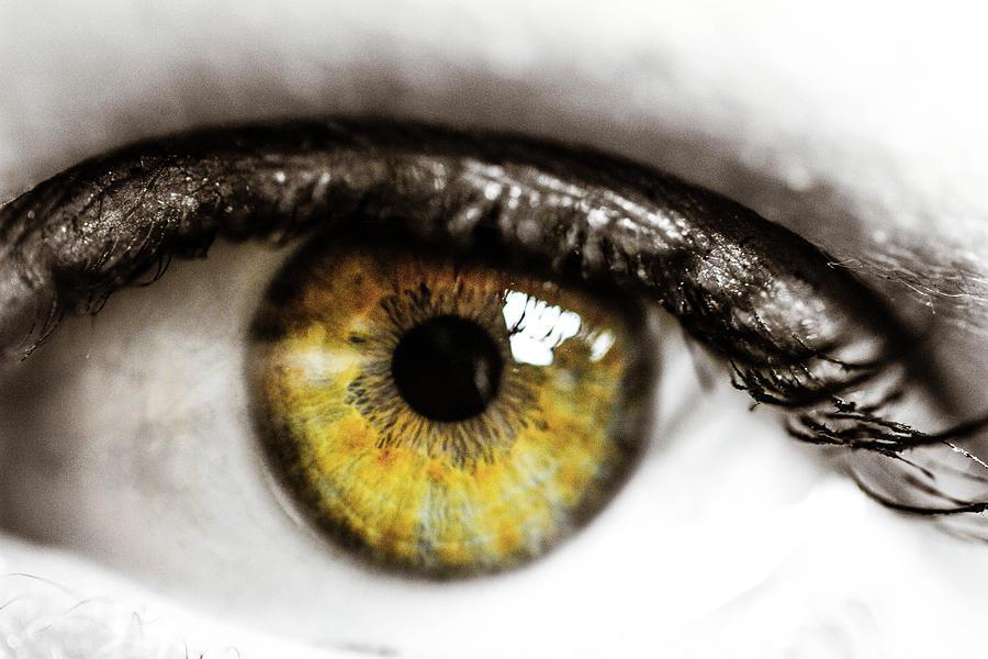Eye Photograph - Eye Macro3 by Danielle Silveira