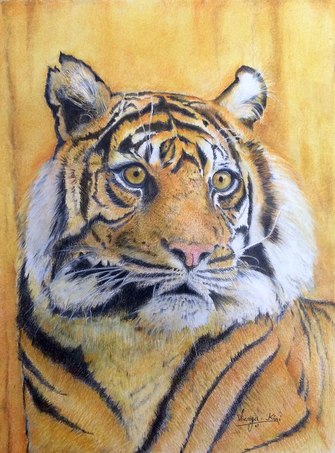 Tiger Painting - Eye of the Tiger by Vinaya Kini