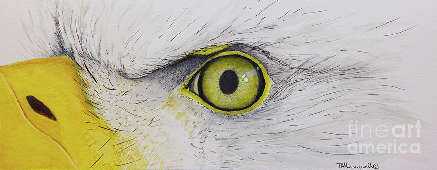 Eye Of The Eagle Painting