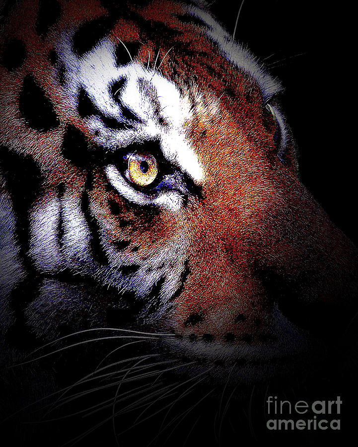 Tiger Photograph - Eye Of The Tiger In Portrait by Wingsdomain Art and Photography