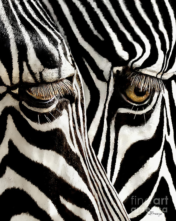 Eyes and Stripes Forever by Jennie Breeze