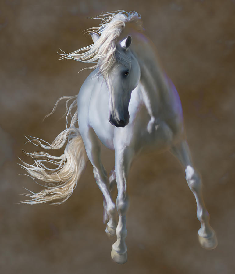 Andalusian Horse Digital Art - Fabuloso by Barbara Hymer