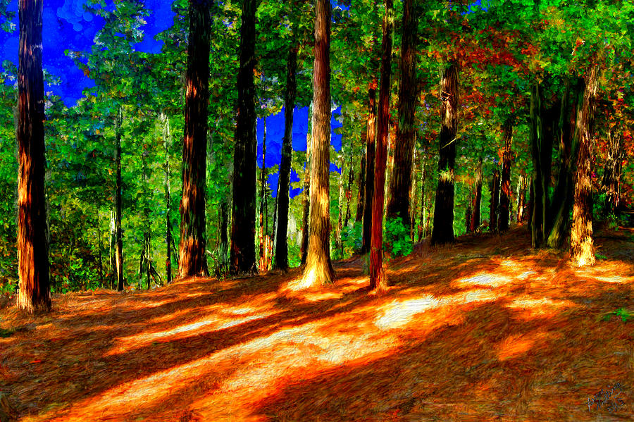 Wilderness Painting - Fabulous Forest at Dawn by Bruce Nutting