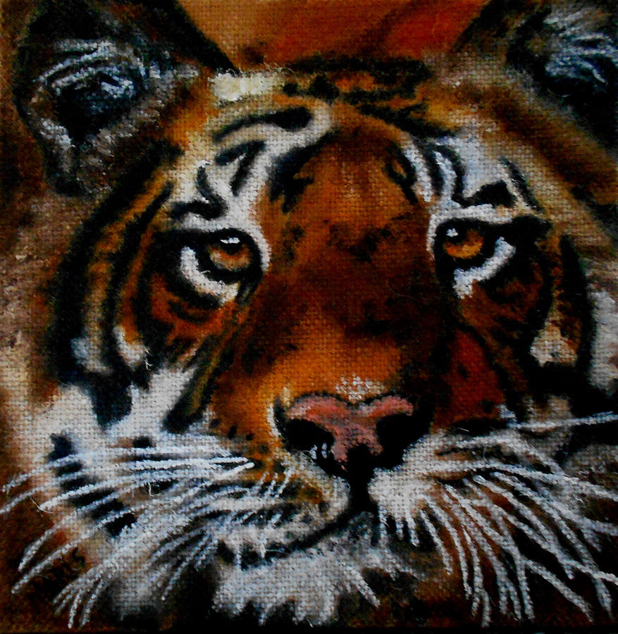 Face of a Tiger by Maris Sherwood