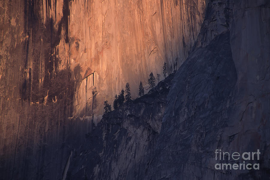 Yosemite Photograph - Face Of Half Dome by Stan and Anne Foster