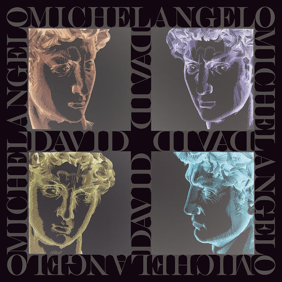 Michelangelo Tapestry - Textile - Faces Of David In Negative by Barbara Lugge