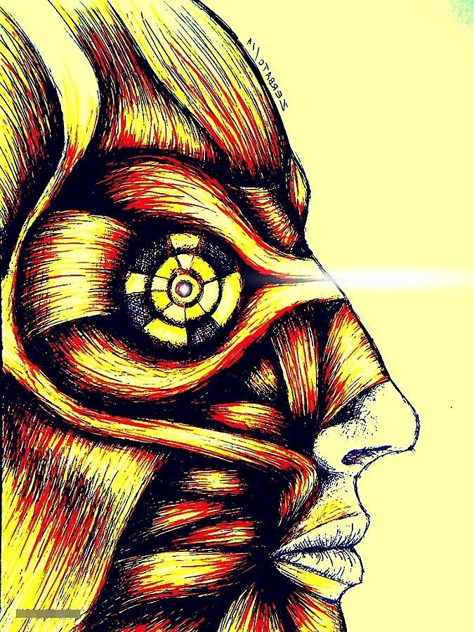 Muscle Digital Art - Facial Muscles by Paulo Zerbato