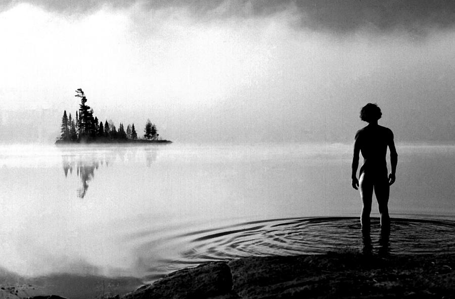 Facing the Island by Wayne King