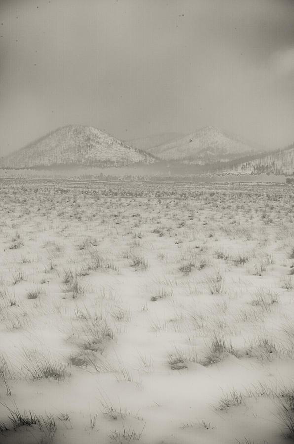 Winter Photograph - Faded Storm by Scott Sawyer