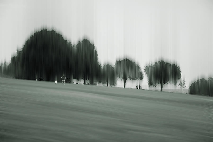 Abstract Photograph - Fading Greens by Rabiri Us