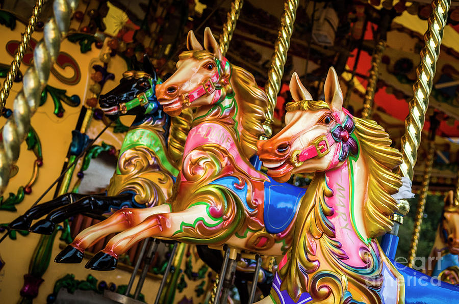 Fairground Carousel Horses by Paul Warburton