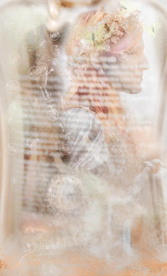 Fairies Amoung Photograph
