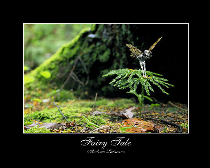 Landscape Photograph - Fairy Tale  by Andrew Laiacano