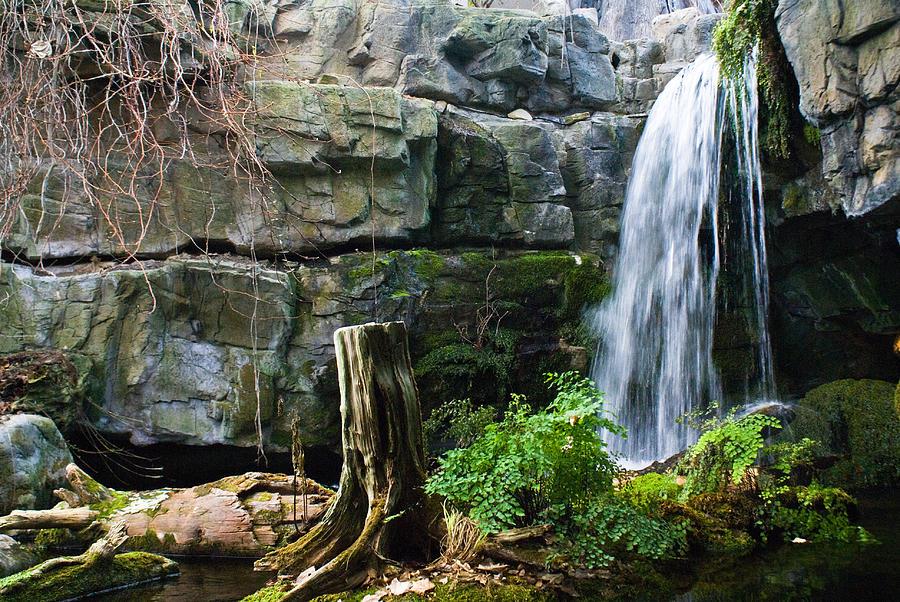Waterfall Photograph - Fairy Waterfall by Douglas Barnett