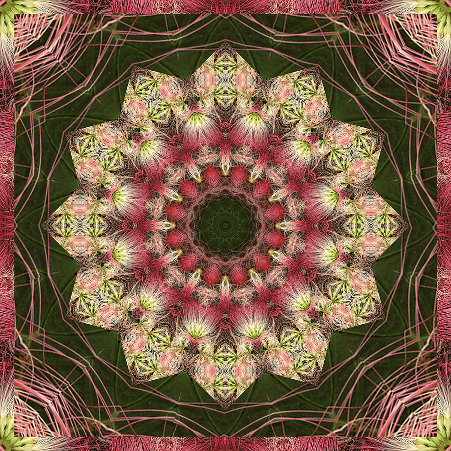 Mandalas Photograph - Faith by Bell And Todd