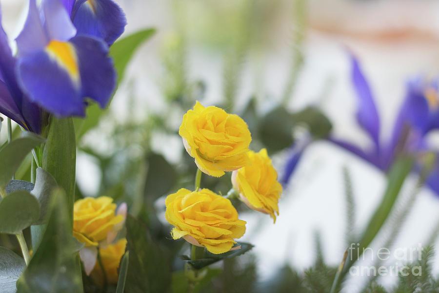 Fake Yellow Flowers 2 Photograph By Ori Porat