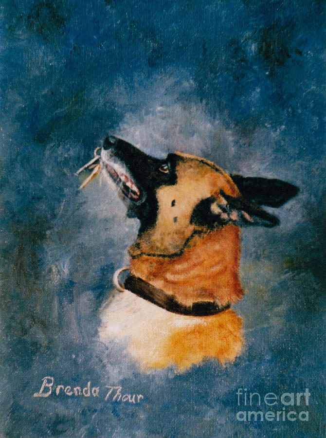Pet Portrait Painting - Falco by Brenda Thour