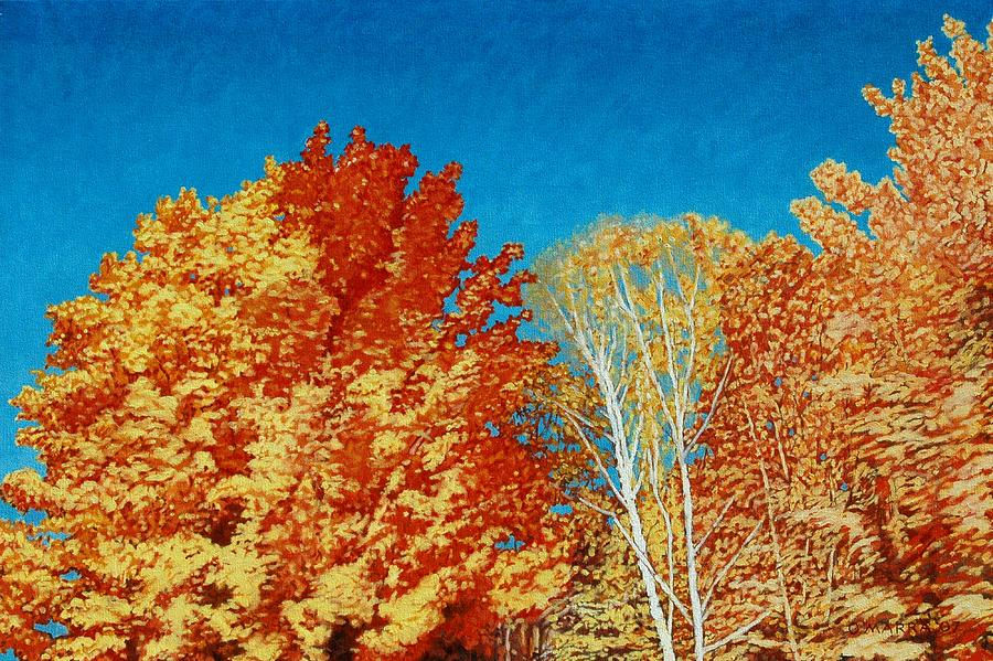 Fall Color Painting - Fall by Allan OMarra