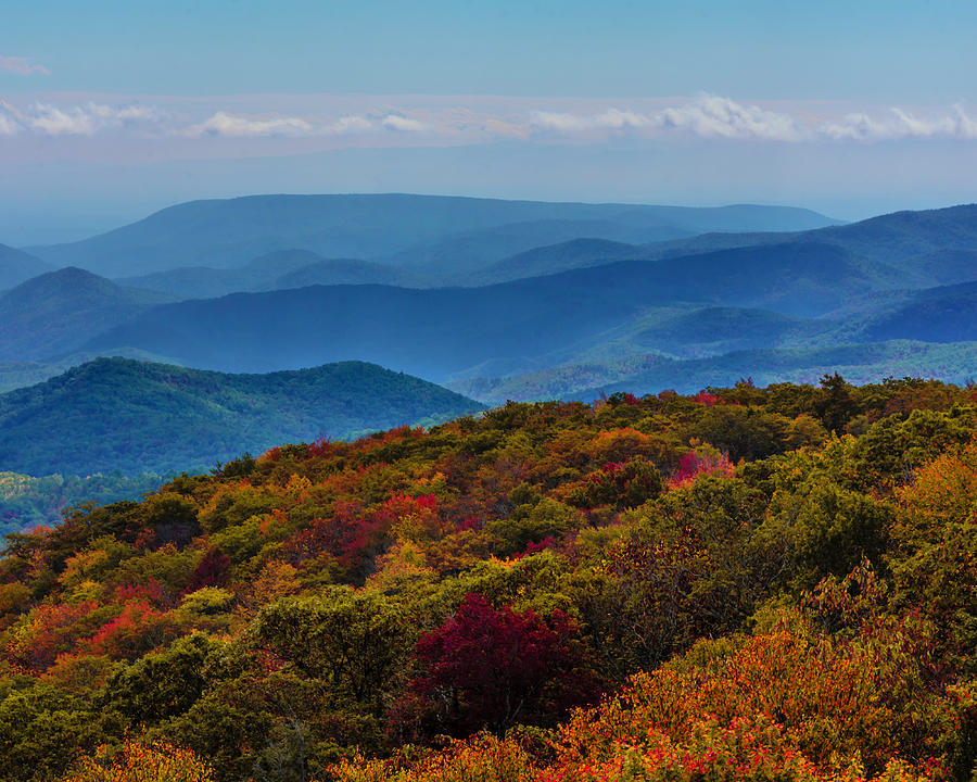 Fall Along the Blue Ridge Mountains by Chris Coffee