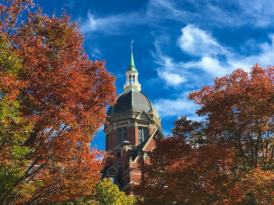 Fall And The Dome