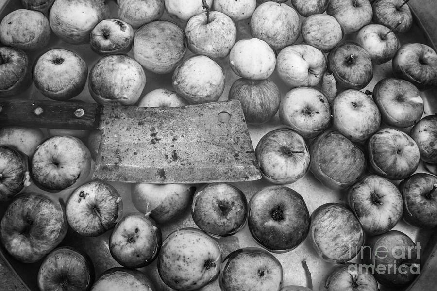 Fall Apple Picking by Glenn Gordon
