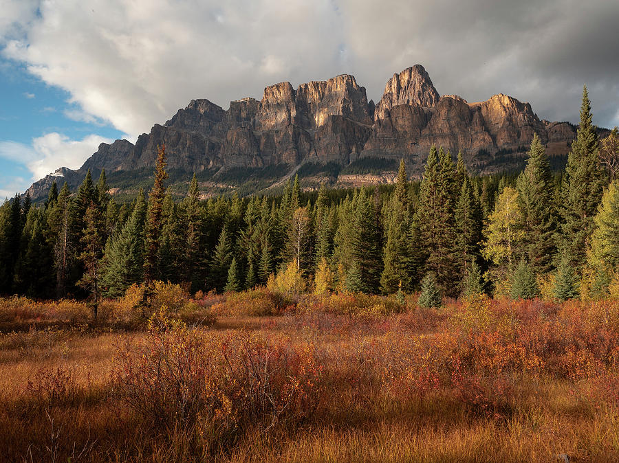 Fall at Castle Mountain by Emily Dickey