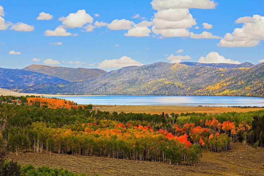 Fall at fish lake in utah photograph by bob palin for Fish lake utah