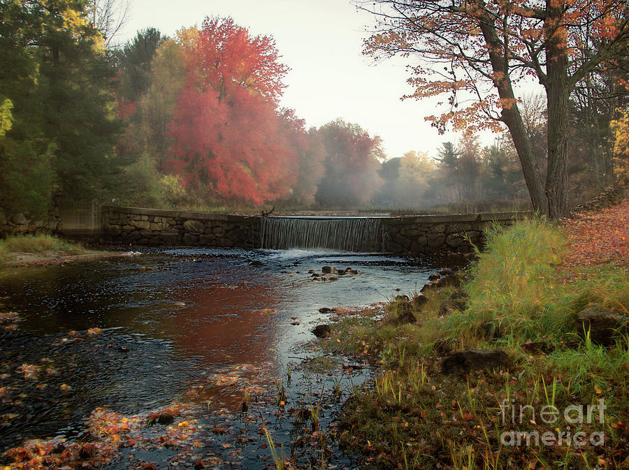 Fog Photograph - Fall At Griffin Mill by Diana Nault
