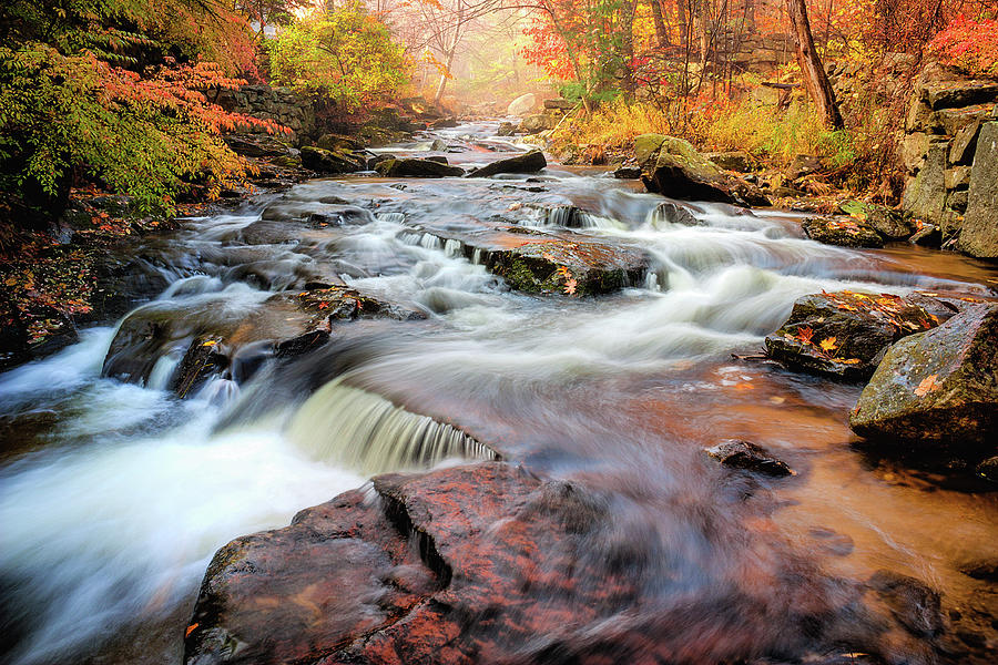 Fall at Gunstock Brook II by Robert Clifford