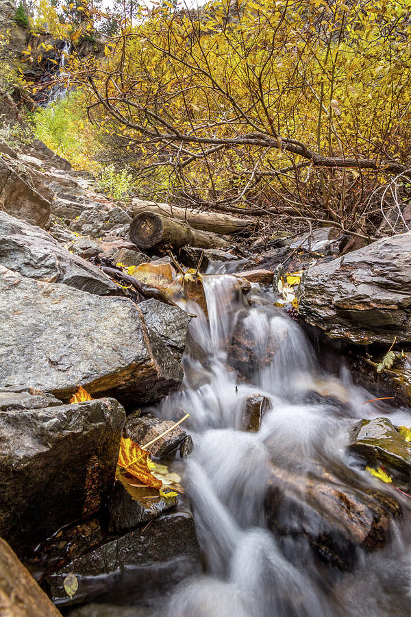 Fall at the Falls by Diane Mintle
