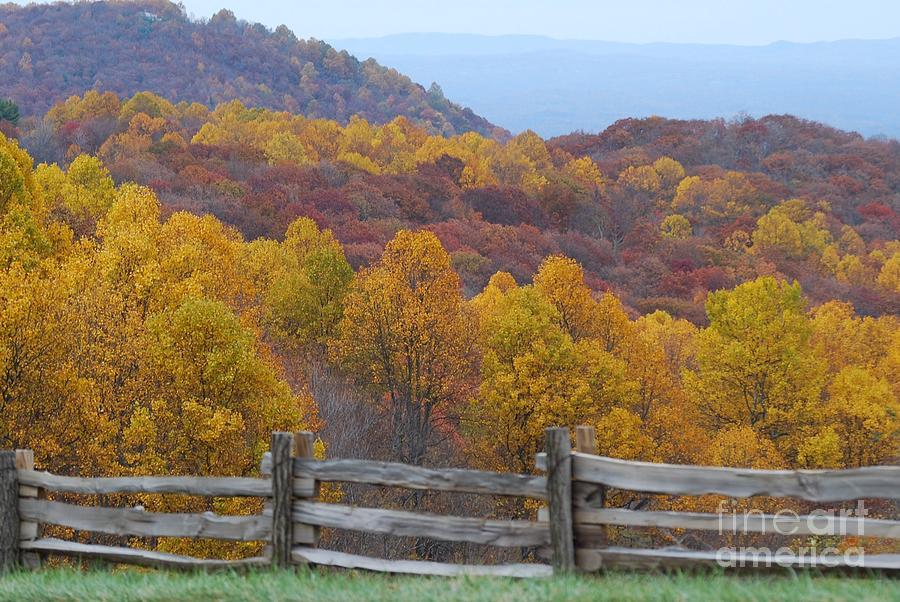 Fence Photograph - Fall Blend by Eric Liller