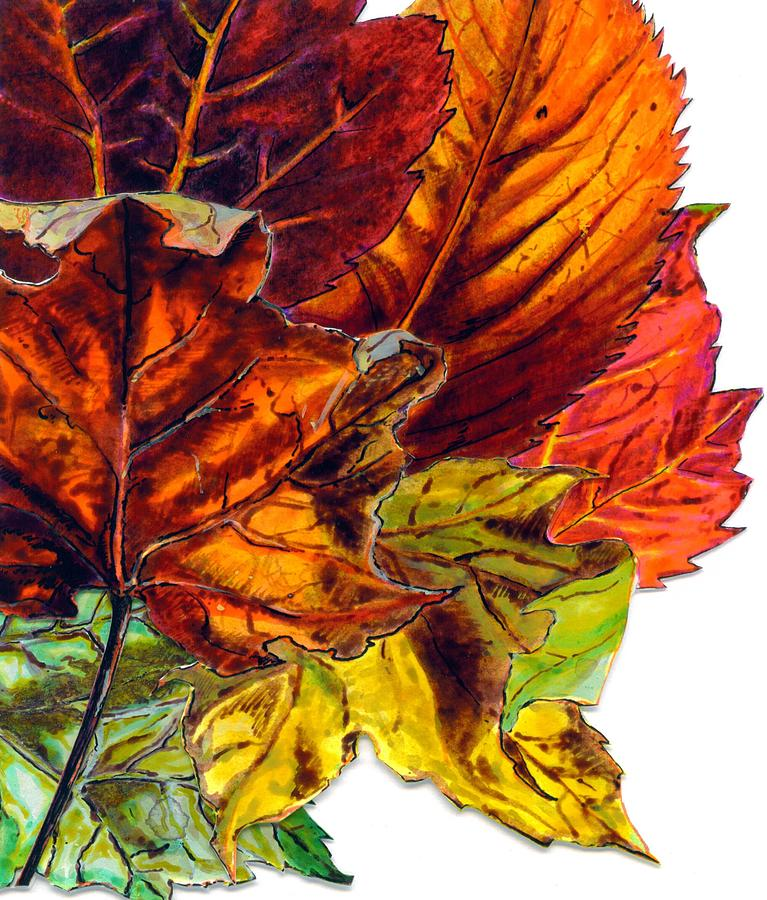 Fall Card Design II Painting by Cameron Hampton PSA