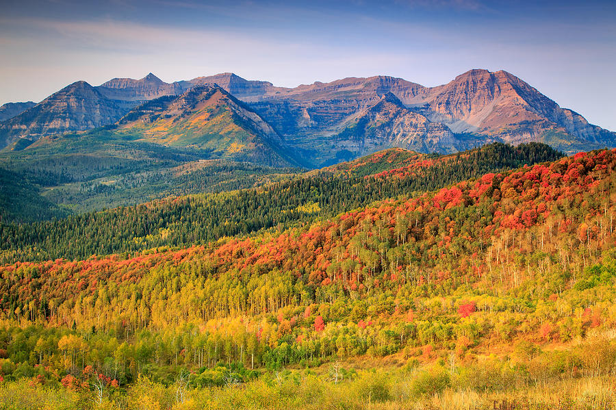 Fall Photograph - Fall Color On The East Slope Of Timpanogos. by Johnny Adolphson