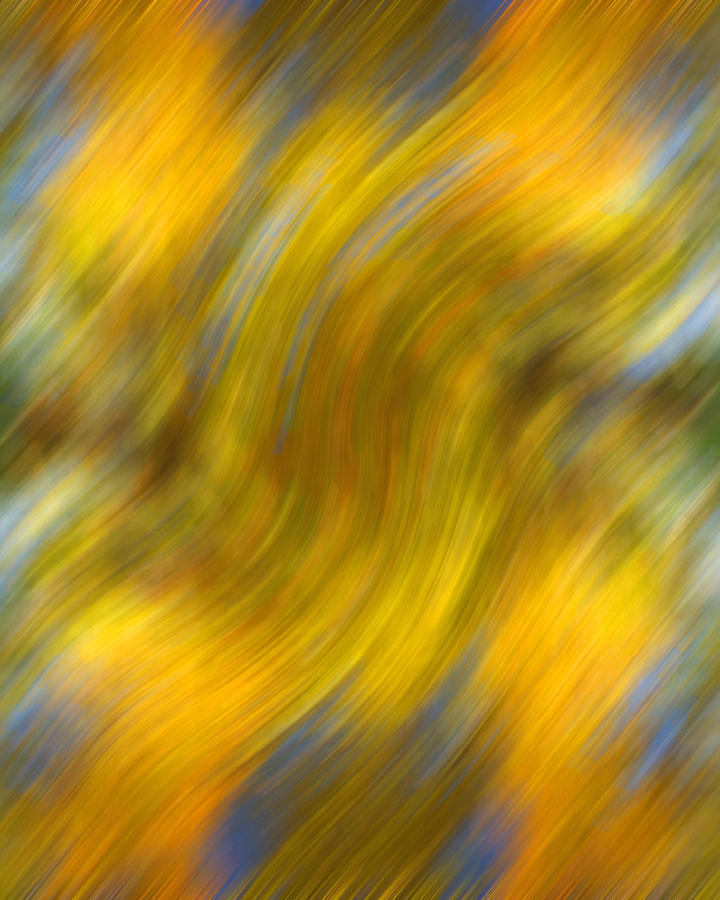 Leaves Photograph - Fall Colors Abstract by Bob Coates