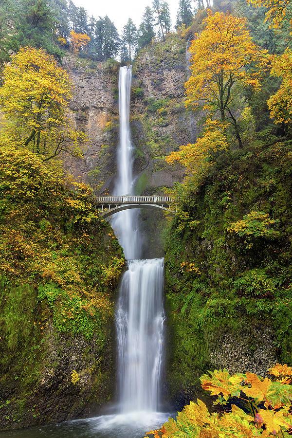 Multnomah Falls Photograph - Fall Colors At Multnomah Falls by David Gn