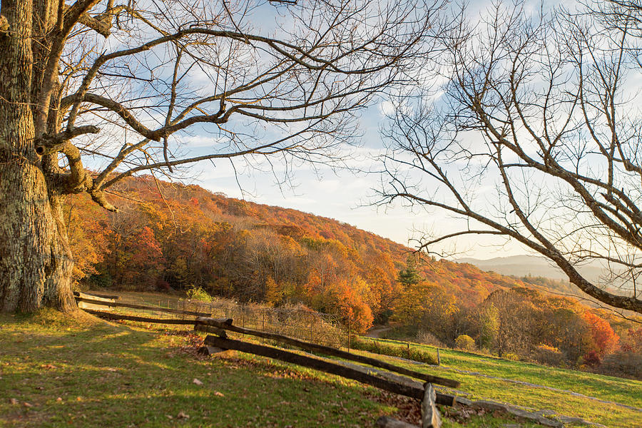 Landscape Photograph - Fall Colors at the Moses Cone Estate by M C Hood