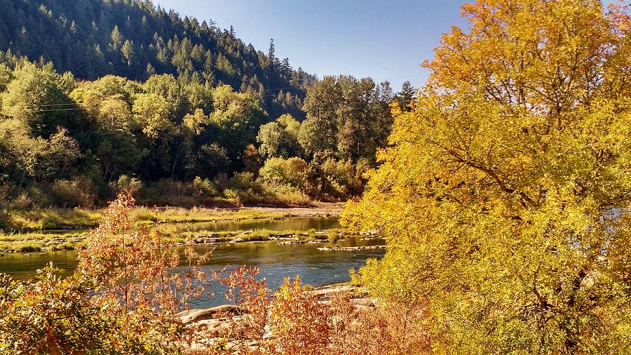 Fall Colors at the Umpqua River by Liz Snyder