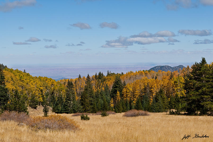 Arizona Photograph - Fall Colors In The Inner Basin by Jeff Goulden