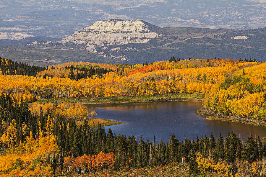 Image result for grand mesa in the fall