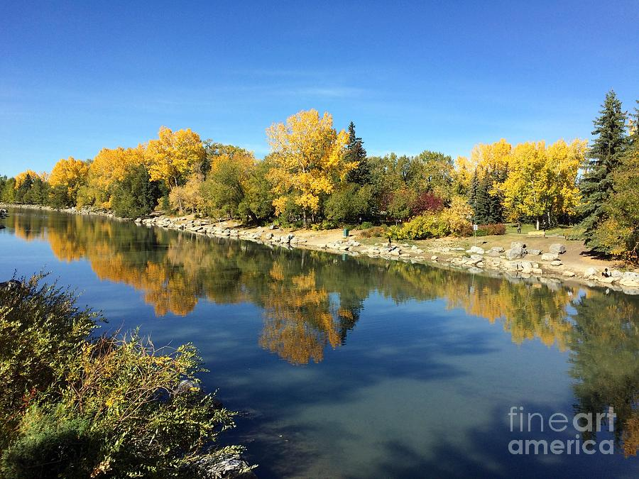 Scenery Photograph - Fall colors on the bank of bow river in Calgary by Akshay Thaker
